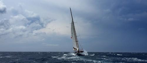 boba-jovanovic-sailing-storm-500x214